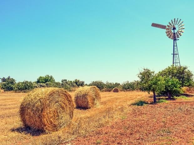 farm-2361569_640